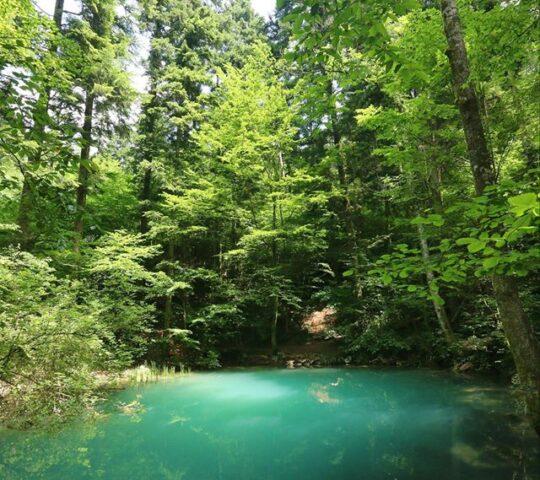 Parcul Național Cheile Nerei