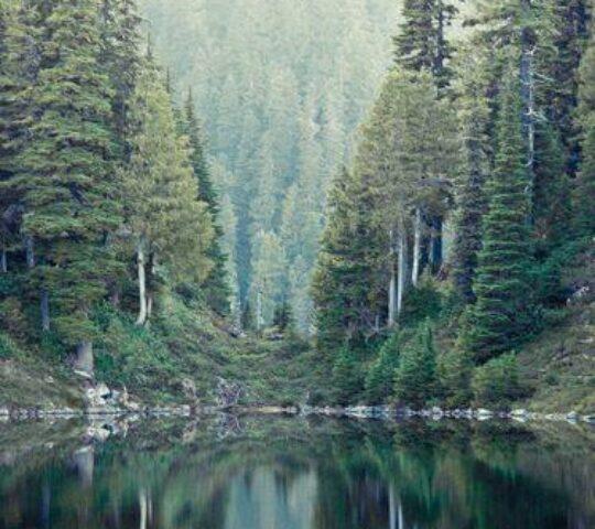 Parcul Național Retezat