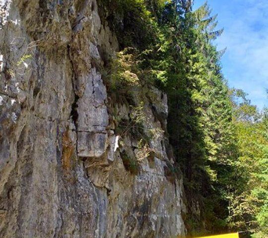 Peștera Dâmbovicioarei